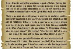 08-Kindness to Animals