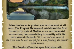 19 - Islam and the Environment