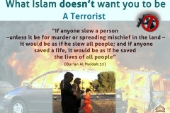 43-What Islam doesn't want you to be A Terrorist